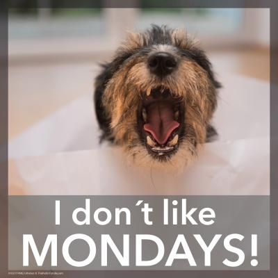 I don´t like mondays...